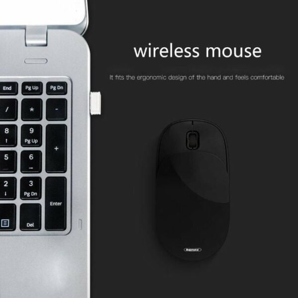 remax mouse